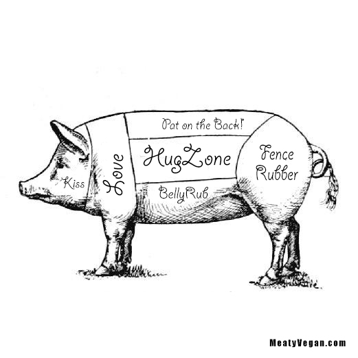 #Pig Diagram - Rethought [Go #Vegan]